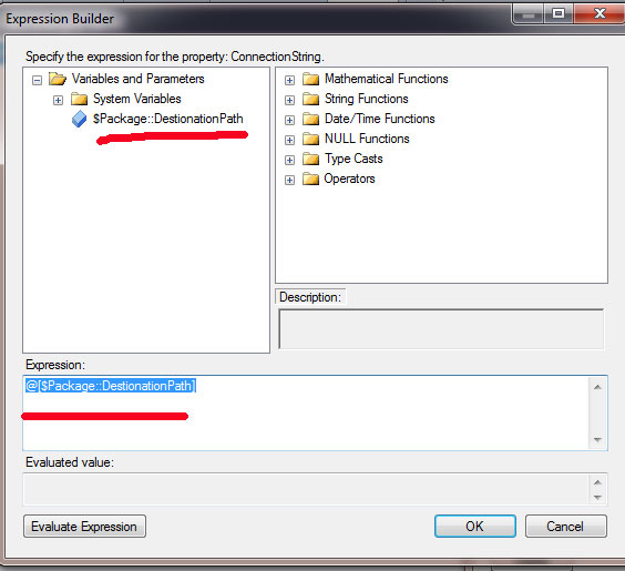 Use of Parameters and Environment Variables with Project